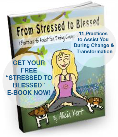 "Get Your Free ""Stressed to Blessed E-Book Now!"